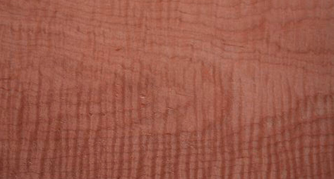 Tiger Maple Wood Available for Online Ordering
